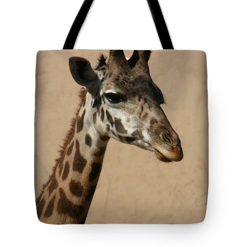 Giraffe Tote Bag featuring the photograph Giraffe by Kelly Hazel