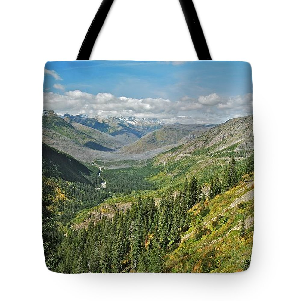 Landscape Tote Bag featuring the photograph Glacier National Park 9275 by Michael Peychich