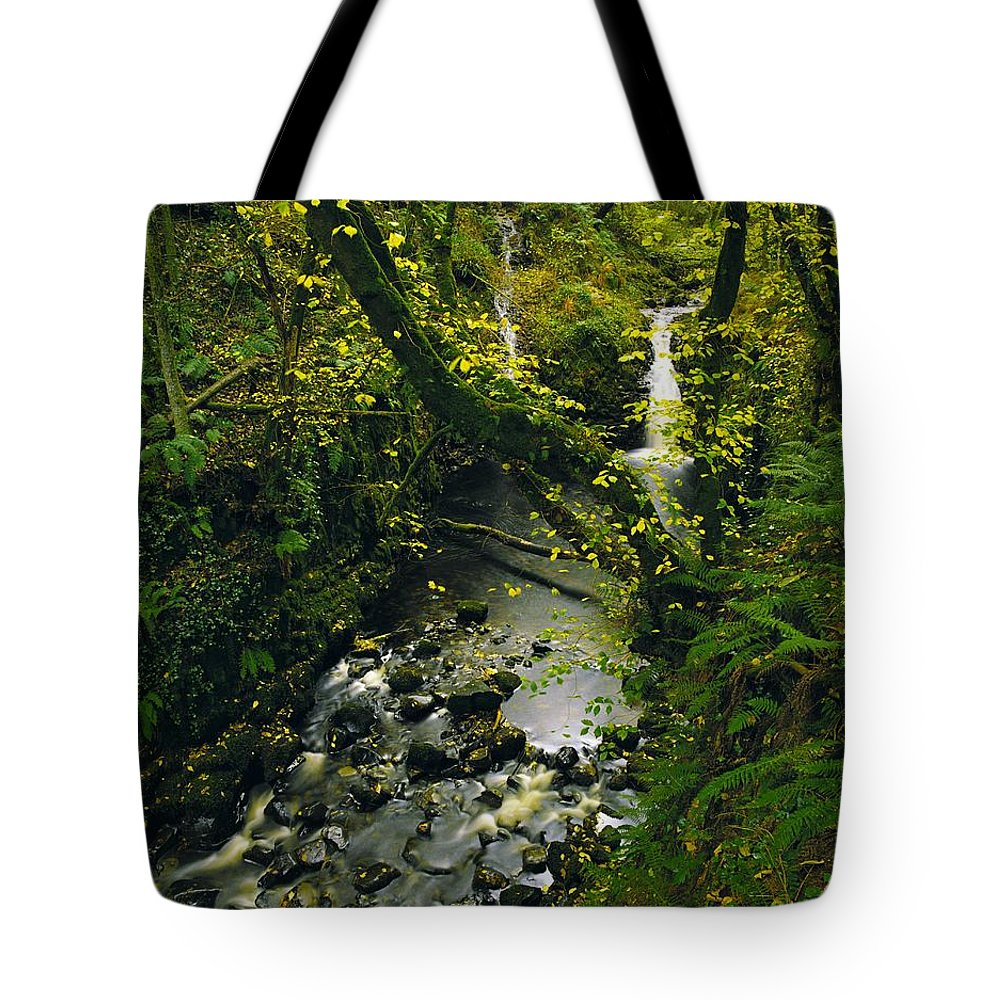 Beauty Tote Bag featuring the photograph Glenariff, Co Antrim, Ireland Waterfall by The Irish Image Collection