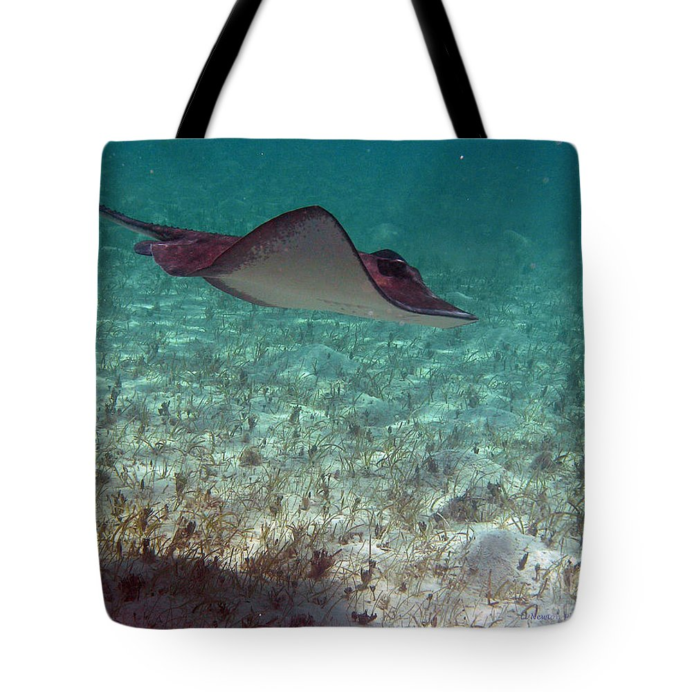 Ray Tote Bag featuring the photograph Glide by Li Newton