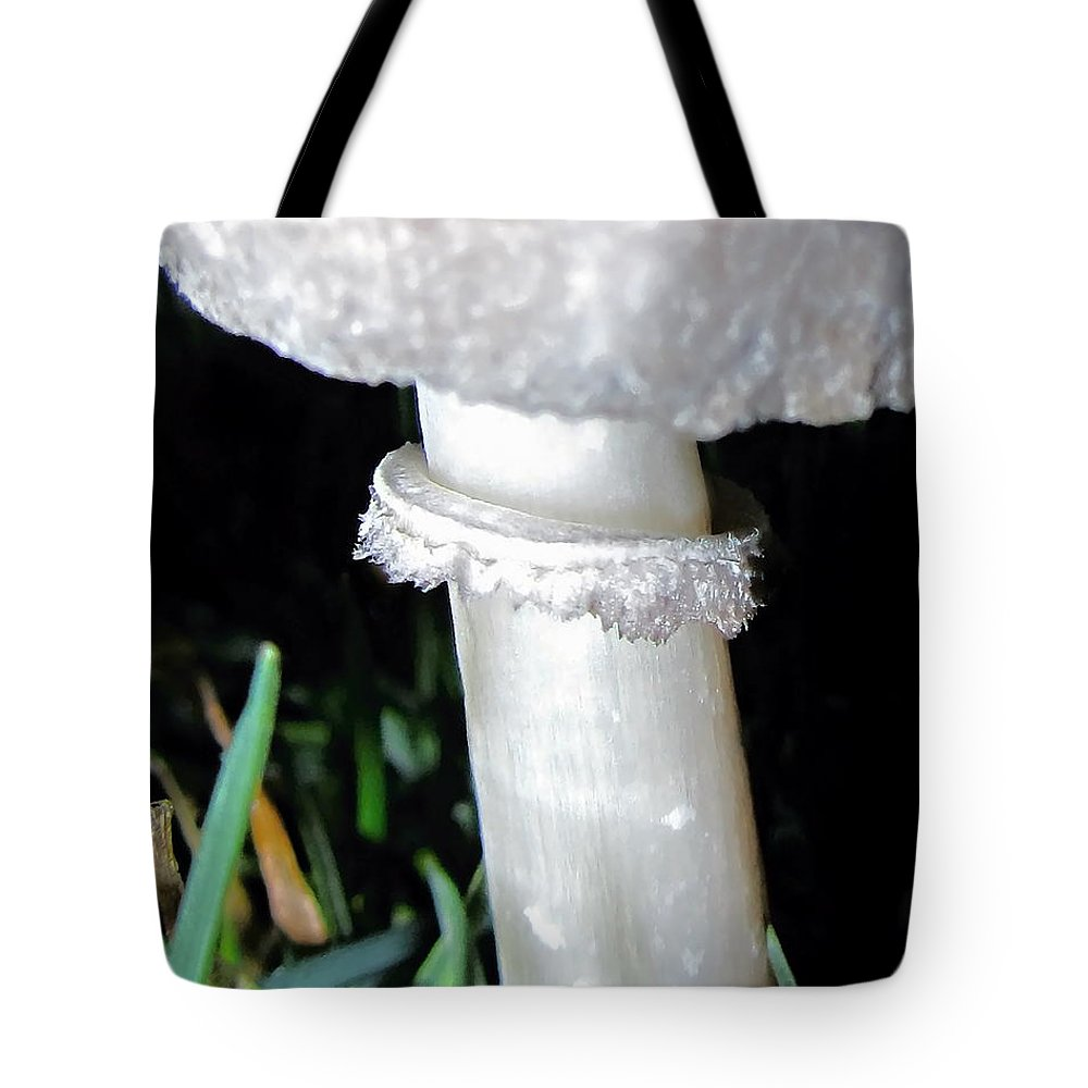 Danielle Parent Tote Bag featuring the photograph Glowing Mushroom by Danielle Parent