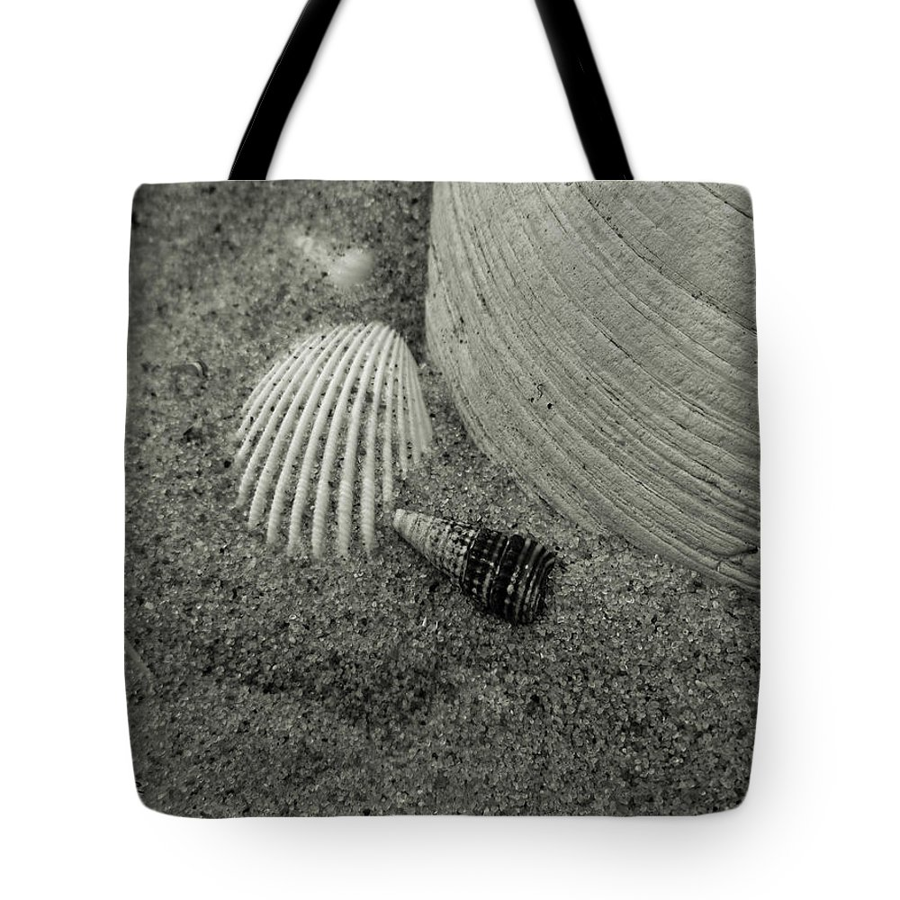 Beach Tote Bag featuring the photograph God's Little Treasures by Trish Tritz