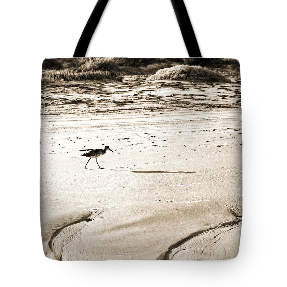 Corpus Christi Tote Bag featuring the photograph Godwit by Marilyn Hunt