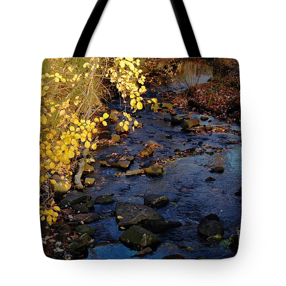 Brook River Stream Sunlight Leaves Fall Autumn Reflection Sky Rocks Tote Bag featuring the photograph Gold And Blue by Vilas Malankar