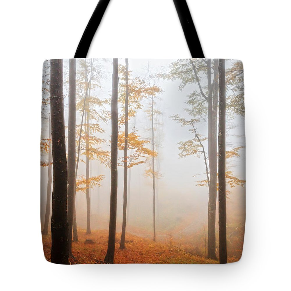 Balkan Mountains Tote Bag featuring the photograph Golden Autumn Forest by Evgeni Dinev
