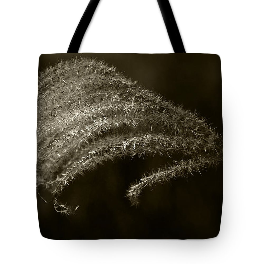 Grass Tote Bag featuring the photograph Golden Grass by Tom Bell