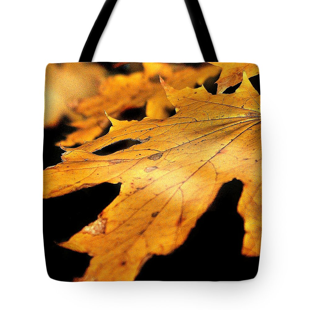 Leaf Tote Bag featuring the photograph Golden Leaf by Mikki Cucuzzo