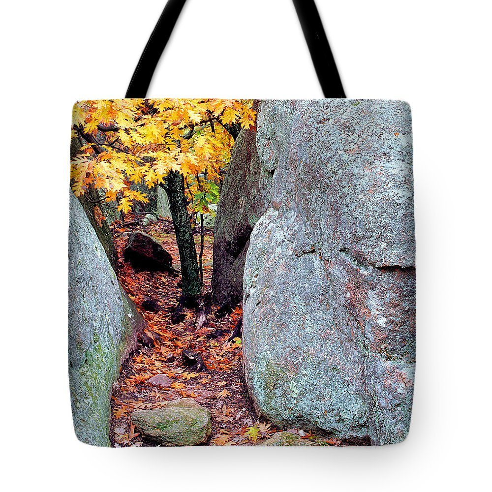 Tree Tote Bag featuring the photograph Golden Oak Through Boulders At Elephant Rocks State Park by Greg Matchick