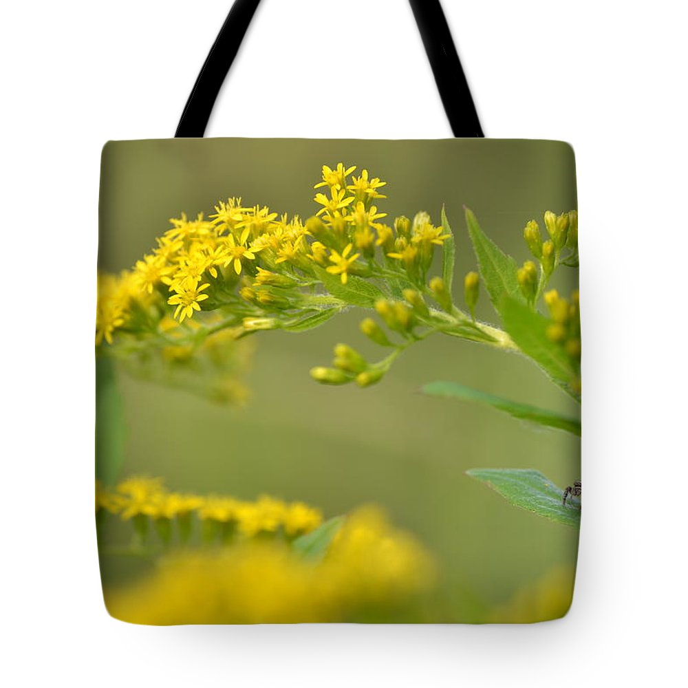 Goldenrod Tote Bag featuring the photograph Golden Perch by JD Grimes