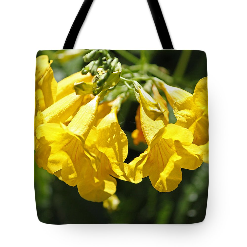 Flower Tote Bag featuring the photograph Golden Trumpets by Suzanne Gaff