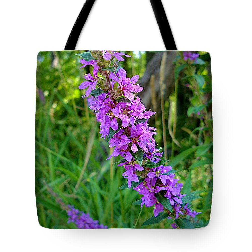 Fish Creek Tote Bag featuring the photograph Good Fishing by Joseph Yarbrough
