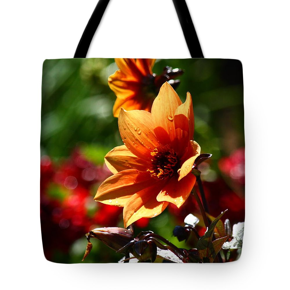 Flower Tote Bag featuring the photograph Good Morning Sunshine by Patrick Witz