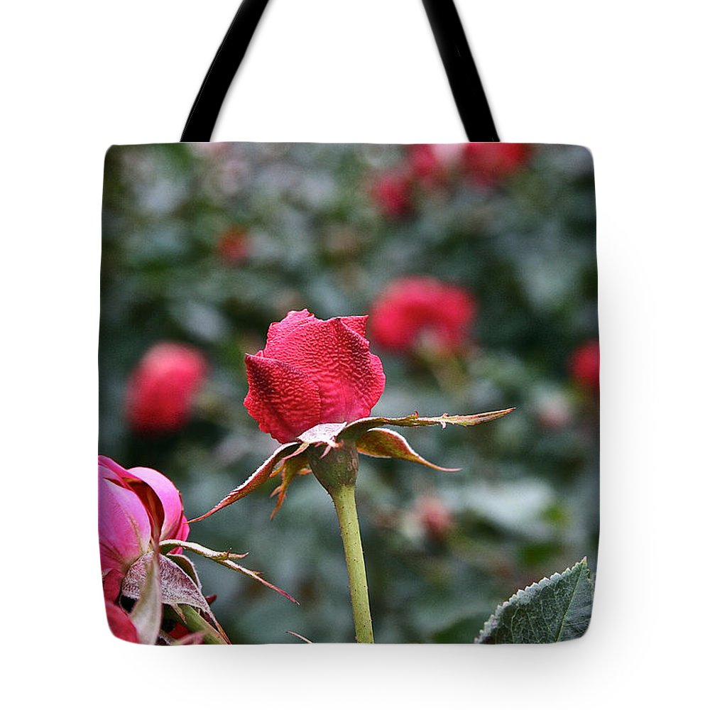 Flower Tote Bag featuring the photograph Goose Bumps by Susan Herber