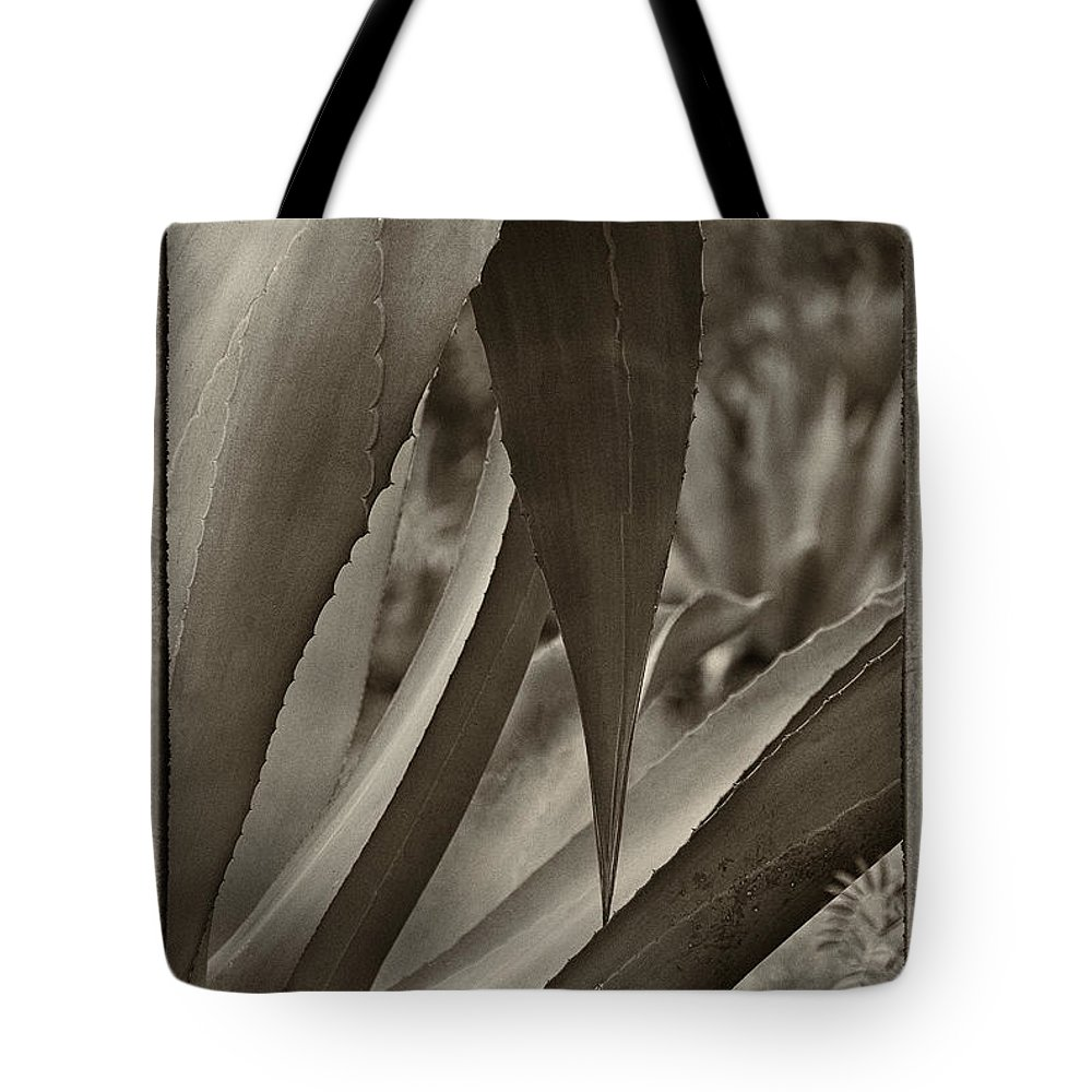 Plants Tote Bag featuring the photograph Grace by Javier Barras