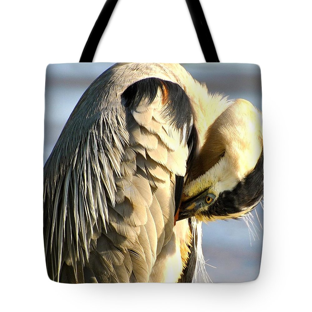 Tricolor Heron Print Tote Bag featuring the photograph Graceful Contemplation by Deborah M Rinaldi