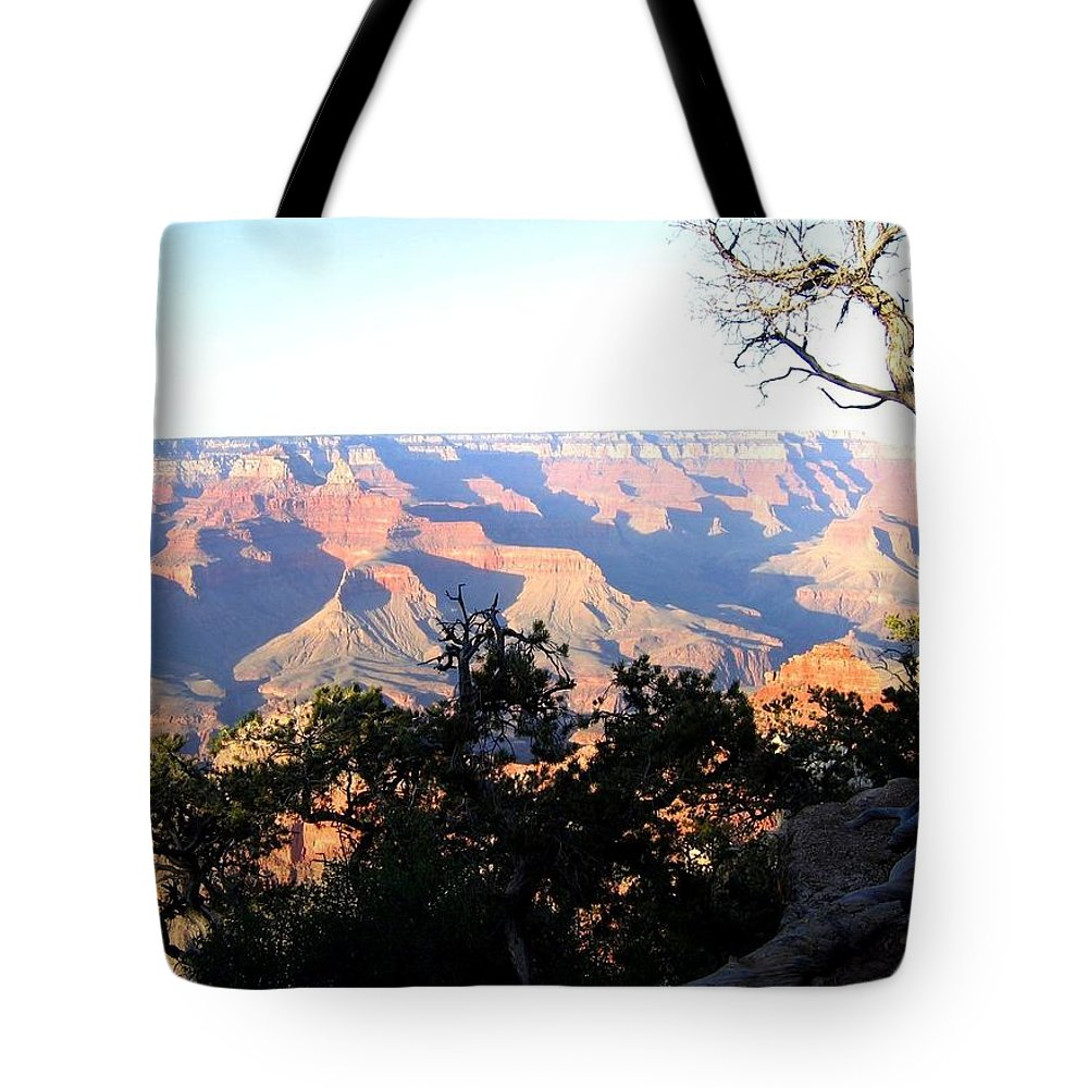 Grand Canyon Tote Bag featuring the photograph Grand Canyon 61 by Will Borden