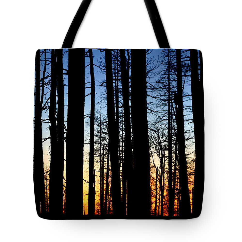 Grand Canyon North Rim Sunset Tote Bag featuring the photograph Grand Canyon North Rim Sunset by Wes and Dotty Weber