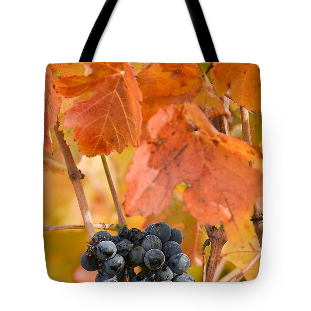Vineyards Tote Bag featuring the photograph Grapes On The Vine - Vertical by Karen W Meyer