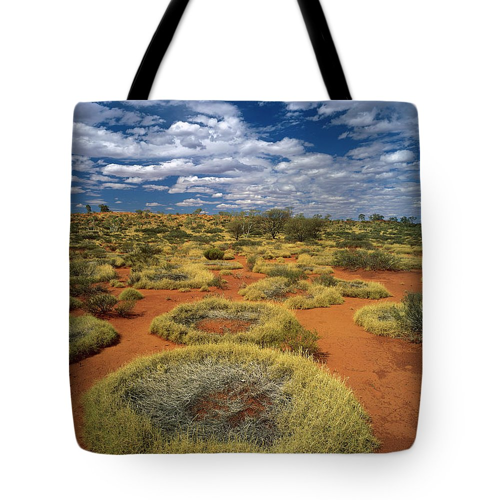 Arid Tote Bag featuring the photograph Grass Triodia Sp Covering Sand Dunes by Jean-Paul Ferrero