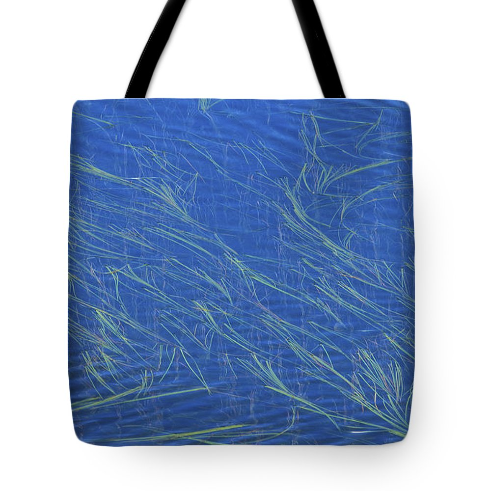 Bronstein Tote Bag featuring the photograph Grasses And Water by Sandra Bronstein