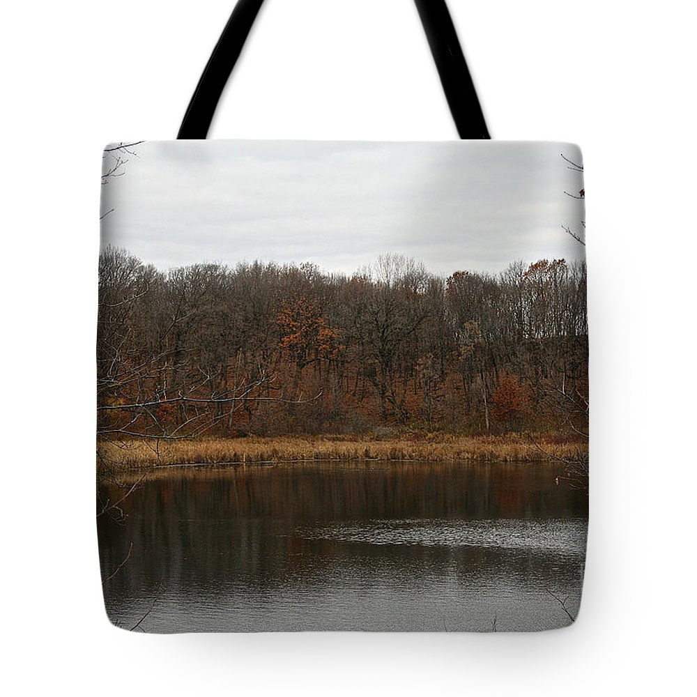 Outdoors Tote Bag featuring the photograph Gray Lake by Susan Herber