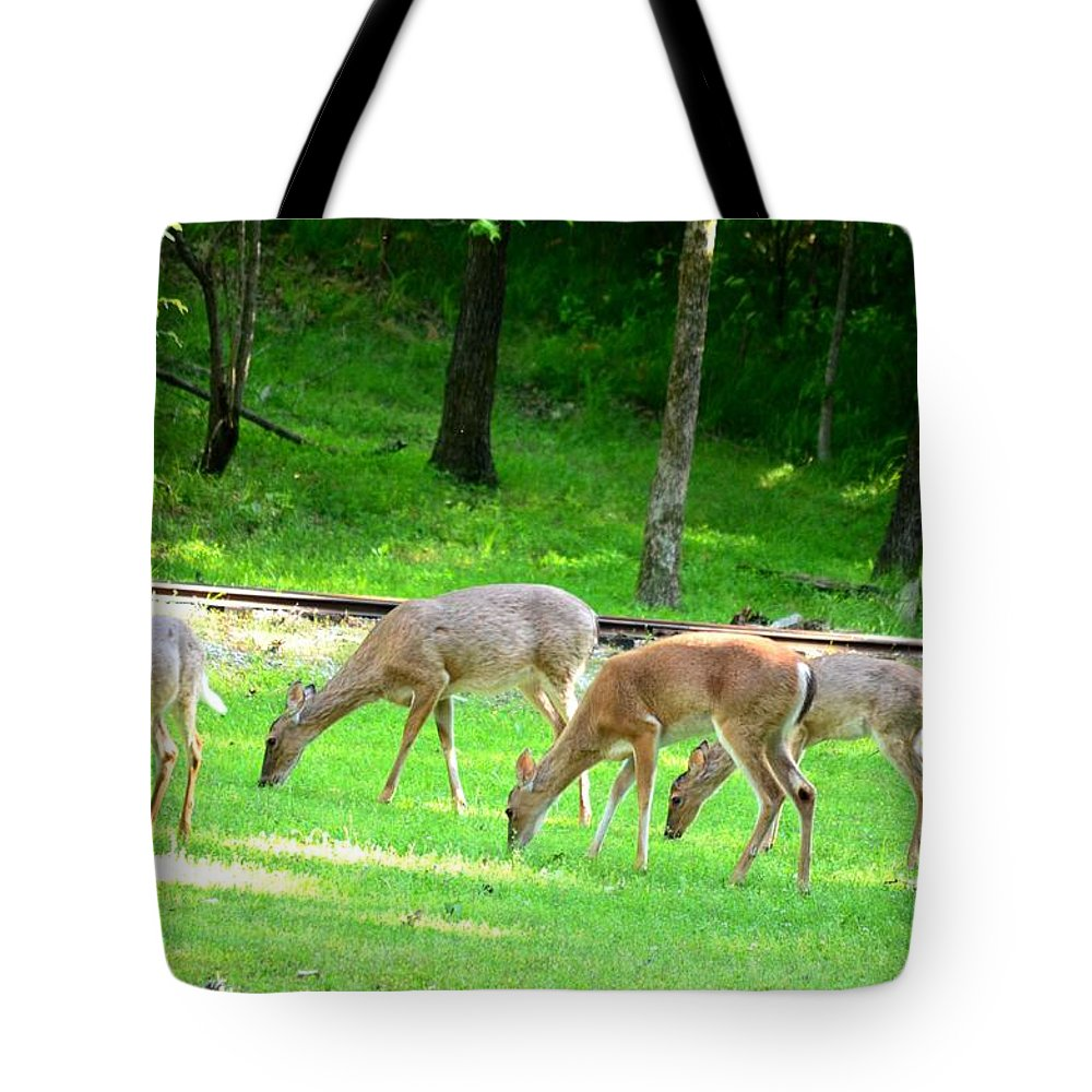 Grazing Tote Bag featuring the photograph Grazing Doe by Maria Urso