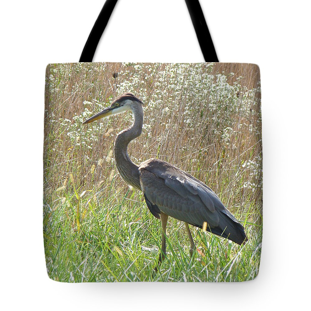 Heron Tote Bag featuring the photograph Great Blue Heron - Ardea Herodias by Mother Nature
