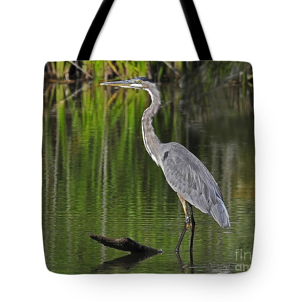 Heron Tote Bag featuring the photograph Great Blue Heron by Rodney Campbell