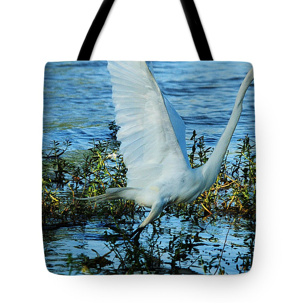 Bird Tote Bag featuring the photograph Great White And Blue by Roy Williams