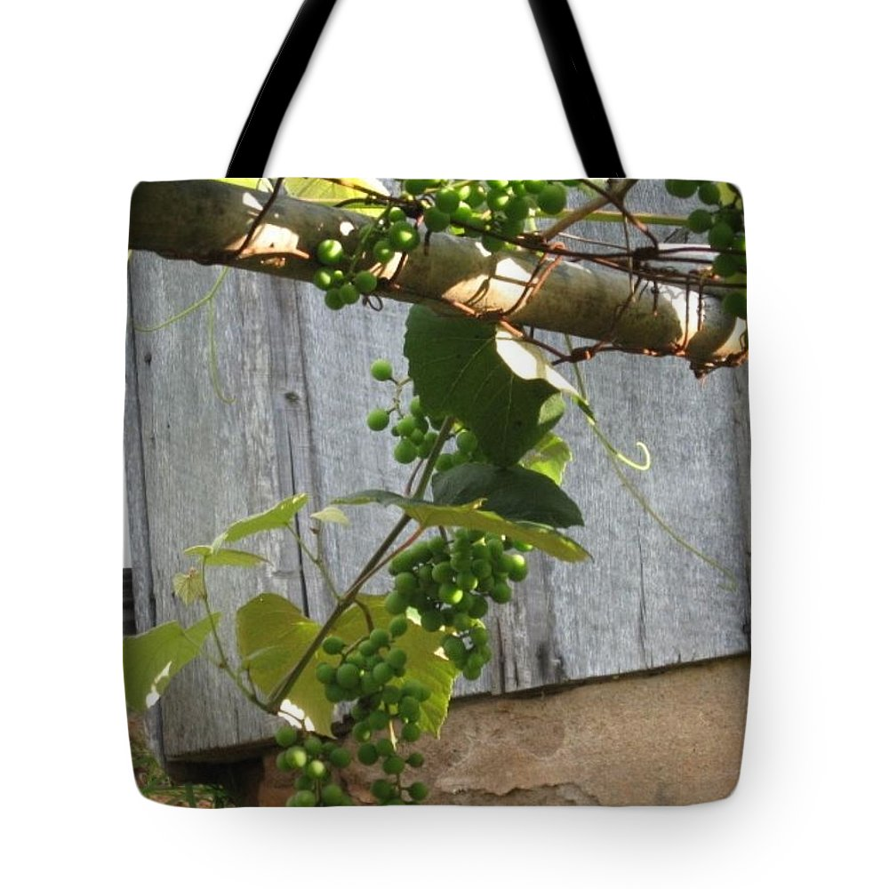 Grapes Tote Bag featuring the photograph Green Grapes On Rusted Arbor by Deb Martin-Webster