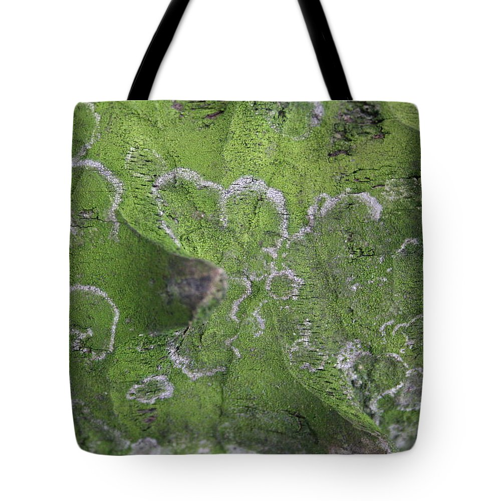 Jennifer Bright Art Tote Bag featuring the photograph Green Lichened Palm Stalk by Jennifer Bright