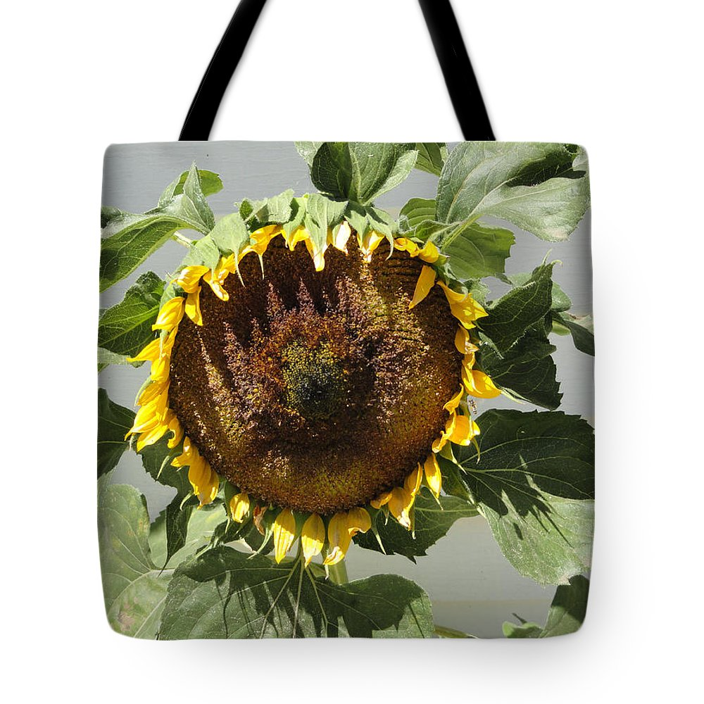 Sunflower Tote Bag featuring the photograph Green Ray by Shannon Grissom