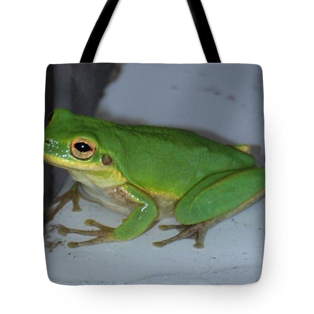 Toad Tote Bag featuring the photograph Green Tree Toad by Judy Hall-Folde