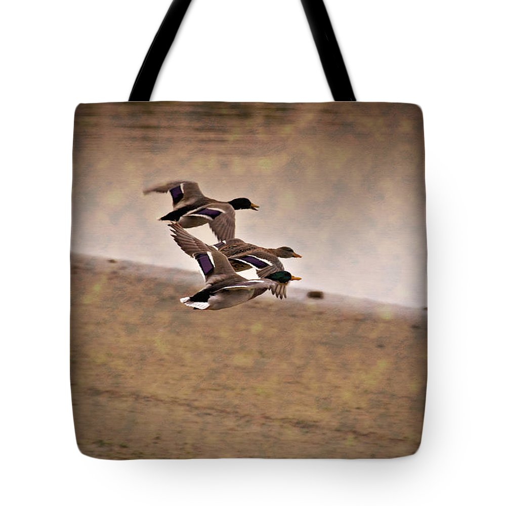 Ducks In Flight Tote Bag featuring the photograph Grouping V1 by Douglas Barnard