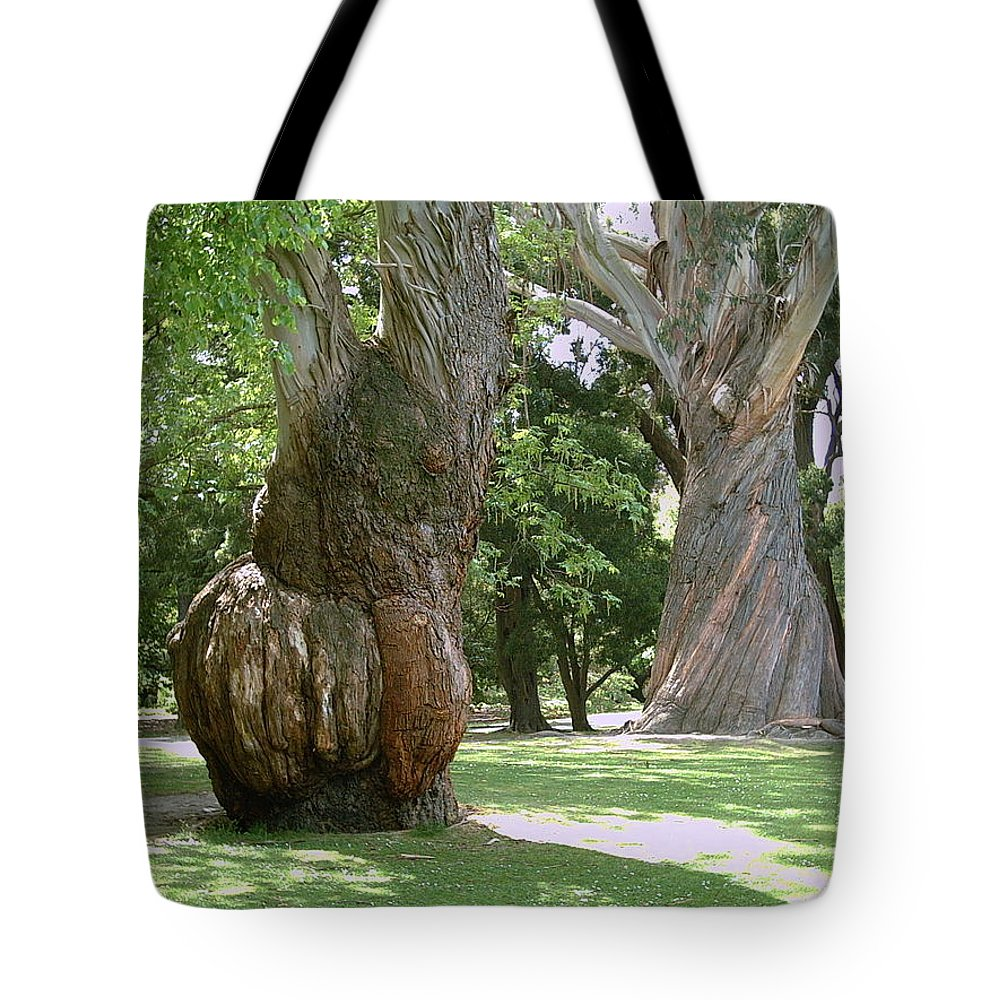 Gum Trees Tote Bag featuring the photograph Gum Trees by Joyce Woodhouse