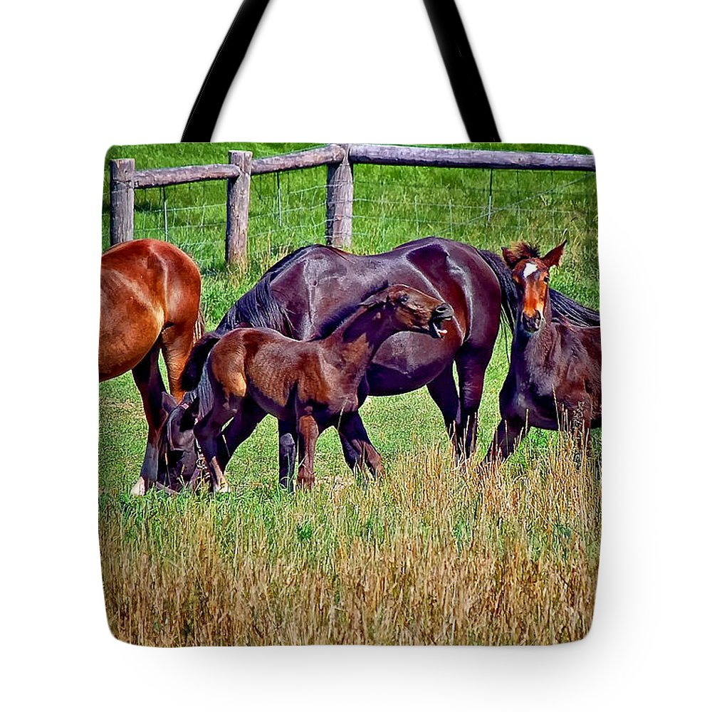 Horses Tote Bag featuring the photograph Had Enough Already by Steve Harrington