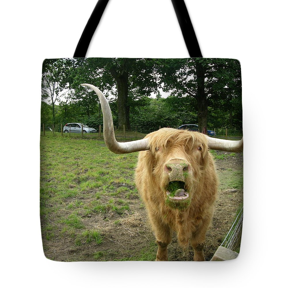 Hamish Tote Bag featuring the photograph Hamish Highland Bull by Keith Stokes