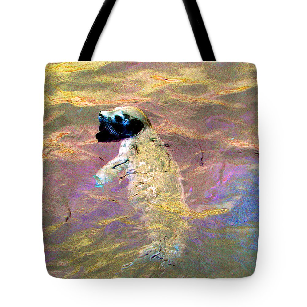 Seals Tote Bag featuring the photograph Harbor Seal by Marie Jamieson