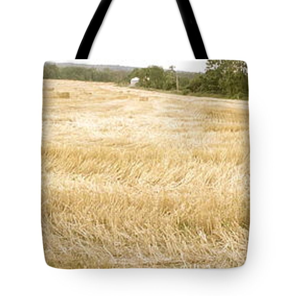 Harvest Tote Bag featuring the photograph Harvest Time by Trish Hale
