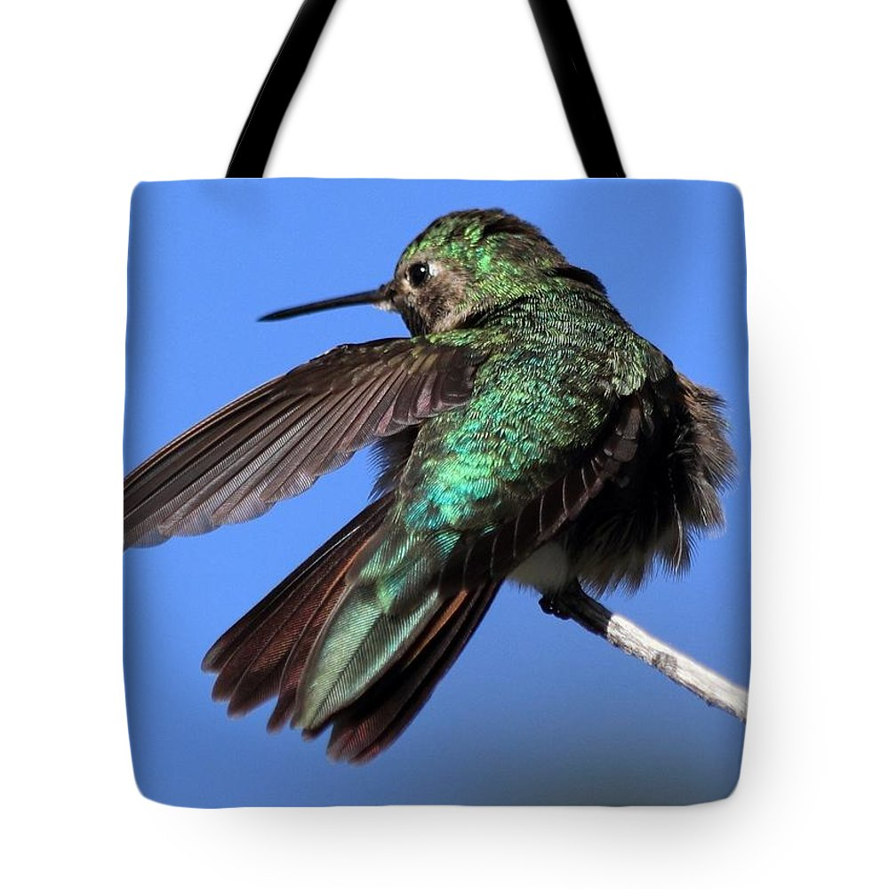 Hummingbird Tote Bag featuring the photograph He Went That Way by Shane Bechler