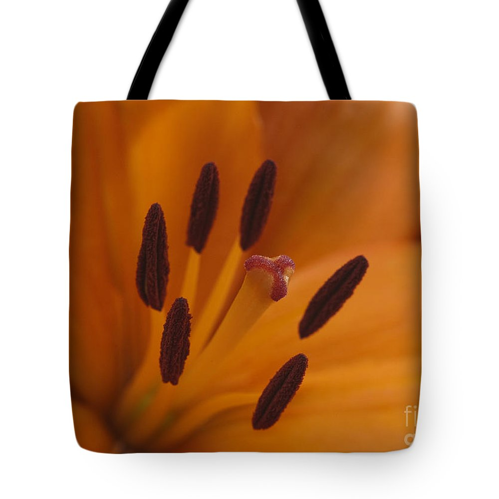 Bronstein Tote Bag featuring the photograph Heart Of The Lily by Sandra Bronstein
