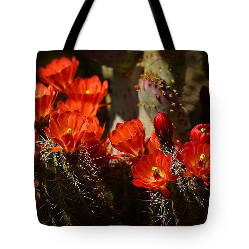 Hedgehog Cactus Tote Bag featuring the photograph Hedgehog Bouquet by Saija Lehtonen