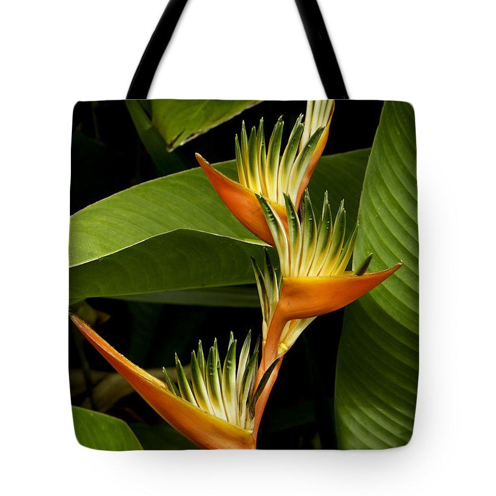 Flowers Tote Bag featuring the photograph Heliconia by Leon Roland