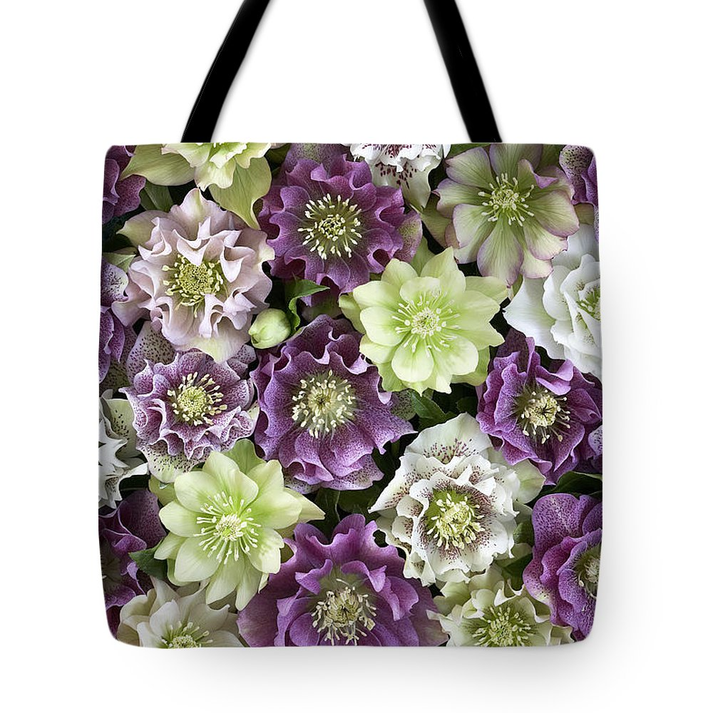 Vp Tote Bag featuring the photograph Hellebore Helleborus Sp Flowers by VisionsPictures