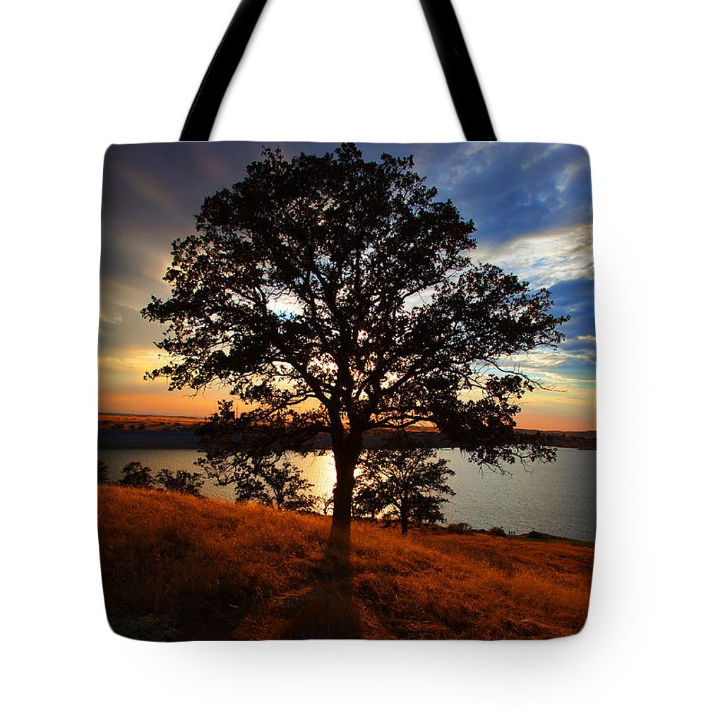 Tree Tote Bag featuring the photograph Hensley Tree by Donovan Conway
