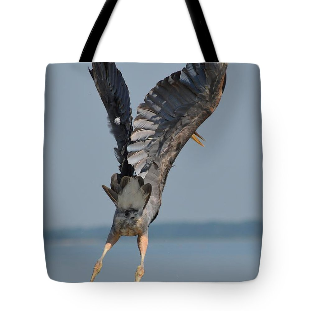 Bird Tote Bag featuring the photograph Heron Hands Up by William Bartholomew