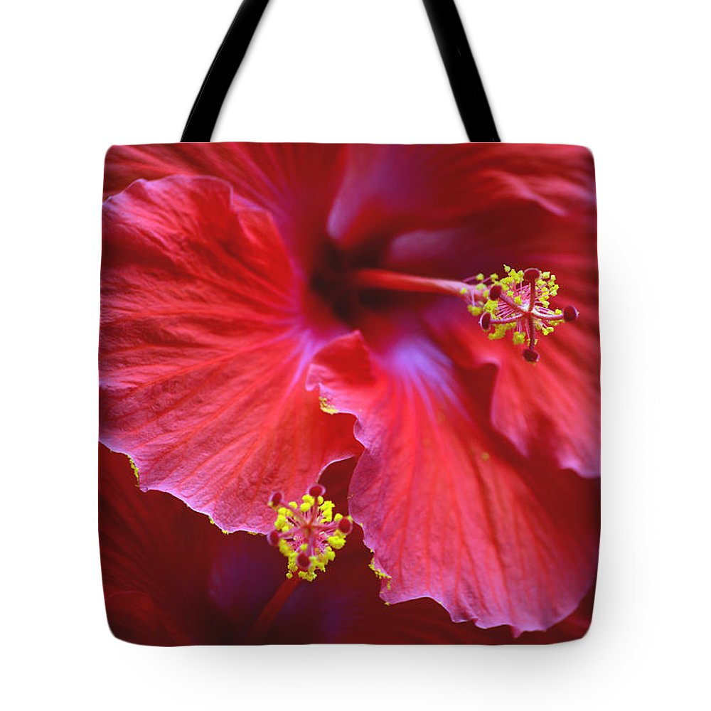 Hibiscus Tote Bag featuring the photograph Hibiscus Duo by Sandi OReilly
