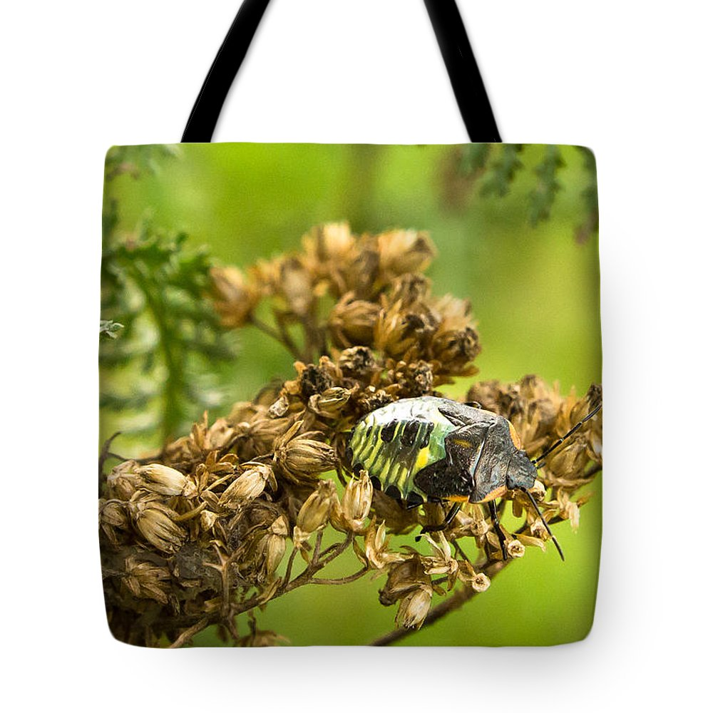 Bill Pevlor Tote Bag featuring the photograph High-tech Armour by Bill Pevlor