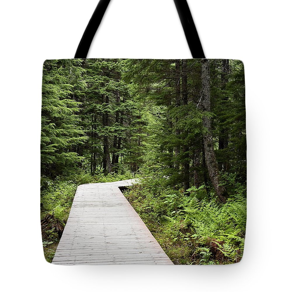 Alaska Tote Bag featuring the photograph Hiking Trail by John Greim