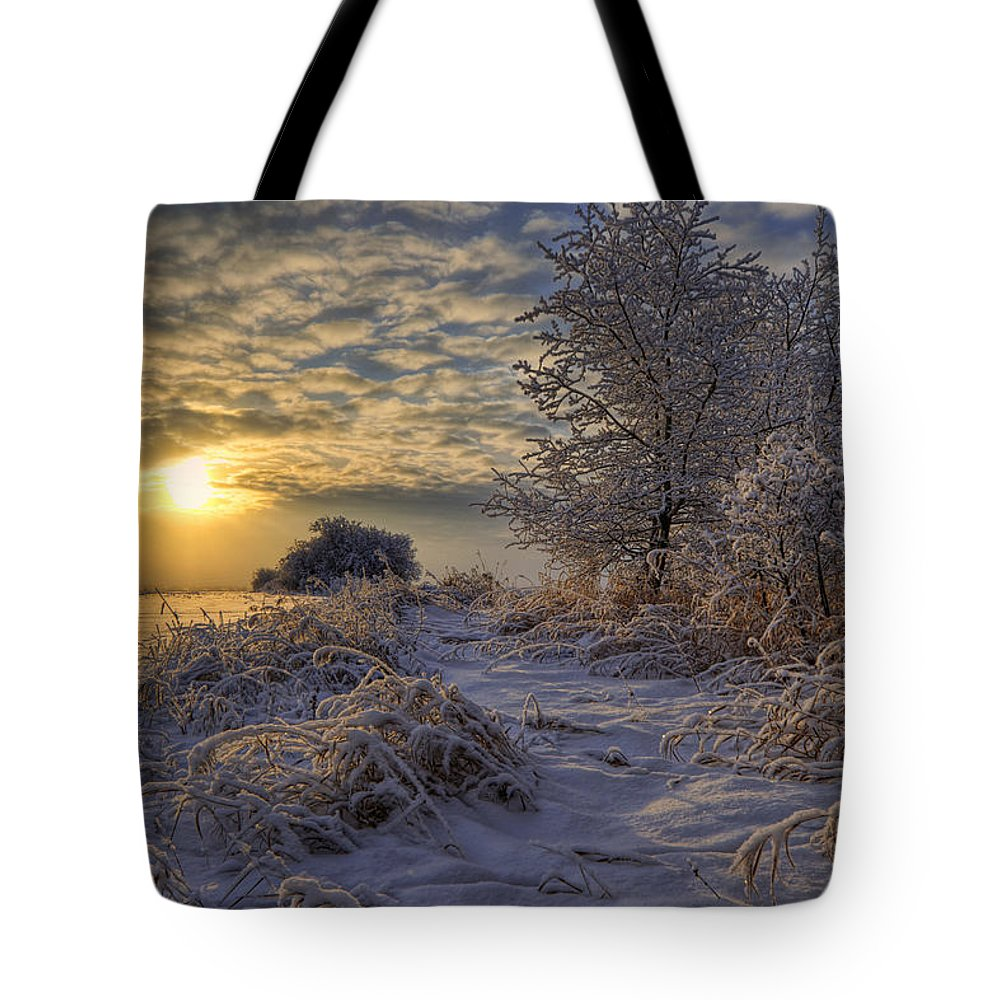 Canadian Tote Bag featuring the photograph Hoar Frost Covered Trees At Sunrise by Dan Jurak